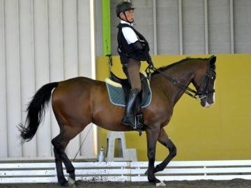 課題は馬とのマッチング。世界の舞台を見据え、日本のトップ選手が国内合宿