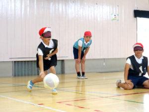 カサカサと音がするボールを投げる!