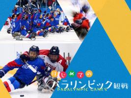 はじめてのパラリンピック観戦 vol.5 ~アイスホッケー日韓戦編~