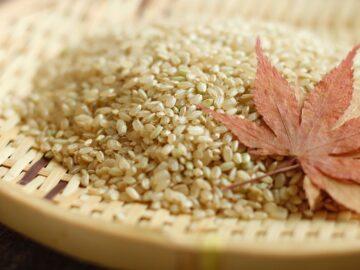 身体に優しくて美味しい「お取り寄せ」が、 日本の食料自給率を上げるかもしれない