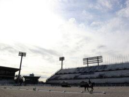 馬術・東京2020パラリンピック有力選手たちが掴んだ本番会場の手ごたえ~全日本レポート~
