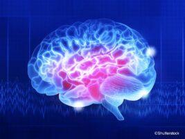 スポーツで頭がよくなる? 最新脳科学が解き明かした、スポーツと脳の意外な関係