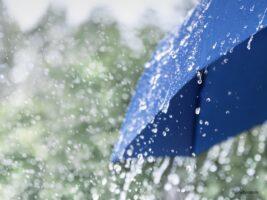 世界初!「ゲリラ豪雨」が察知可能に。人に優しい東京2020大会イノベーション